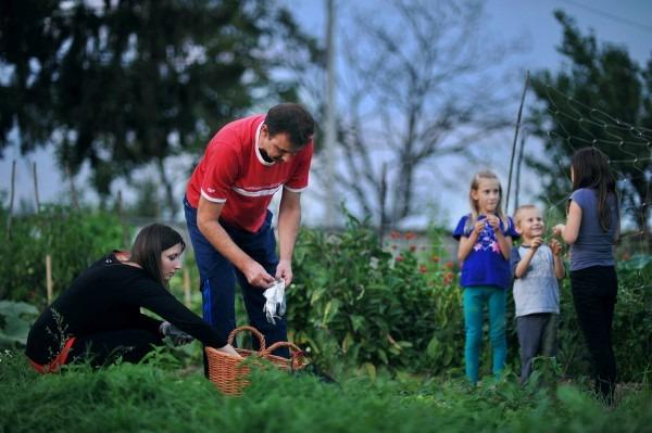 Jesen 2013.: vrt, dan dijabetesa…
